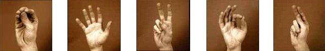 gesty-ruki