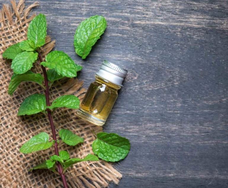 Как сделать освежающую и питательную маску с маслом мяты